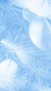略奪愛を叶える青い羽の待ち受け画像