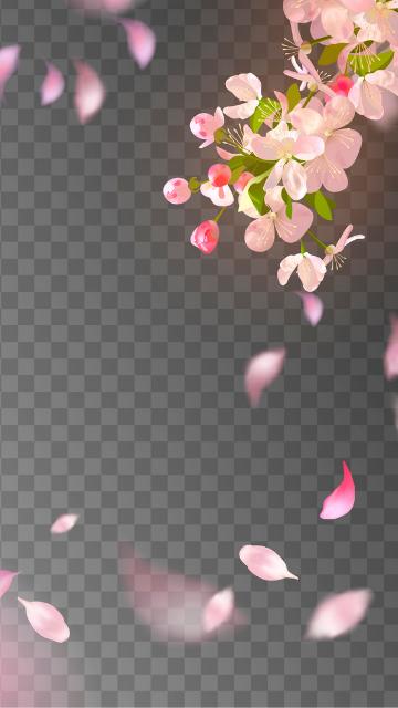 略奪・不倫に効果がある桜の待ち受け画像